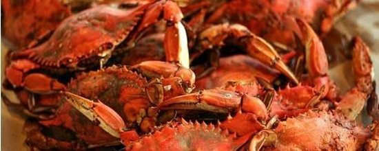 SummerFest Crab Feast & Live Music: July 13th